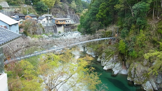 【特定日限定】連休は徳島へ行こう♪大自然をゆったり味わう旅◎2食付