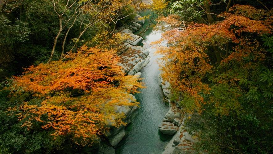 *【周辺観光/秋】土釜の紅葉