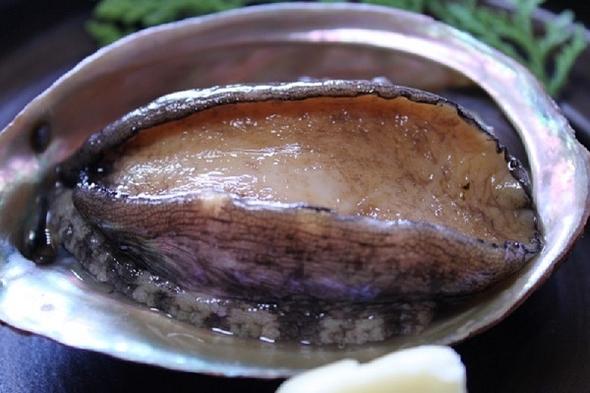 活魚コース タイラギ(平ら貝)刺身 アワビの残酷焼き デラックスプラン おみやげ付き 現金特価