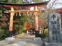 世界遺産 宇治上神社