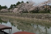 宇治川風景3