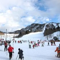 *三川温泉スキー場【お車で約10分】