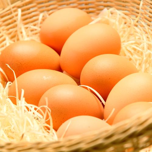 ☆卵の生産量道内一☆を誇る千歳産の新鮮生卵☆