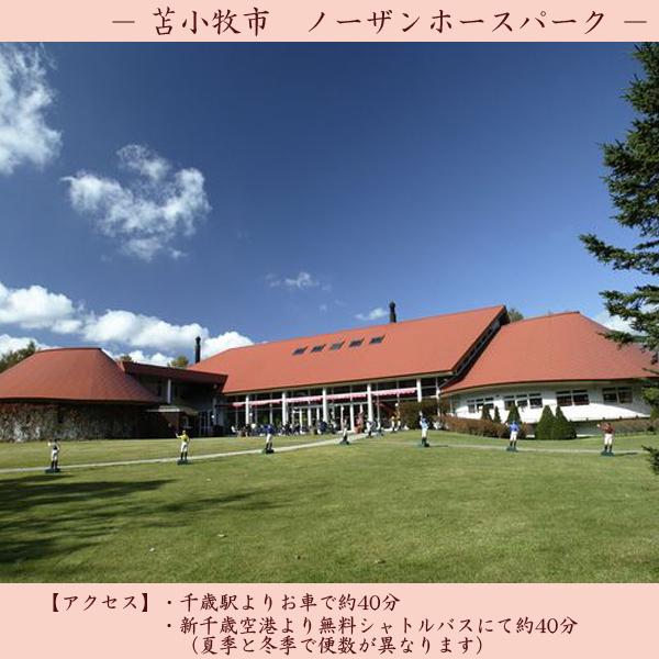【観光】 ノーザンホースパーク