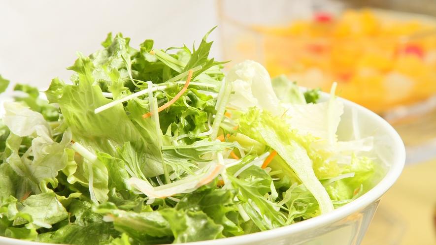 ☆新鮮野菜のサラダコーナー☆
