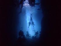 ダイビング 海中