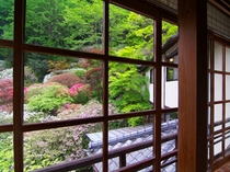 露天風呂付客室【きよすみ】から望む中庭のつつじ