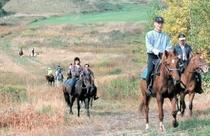 乗馬、ホーストレッキングも体験できます
