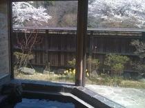 檜の岩風呂から見る