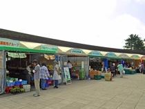 【周辺】道の駅マオイの丘公園にある新鮮な野菜が揃う農産物直売所