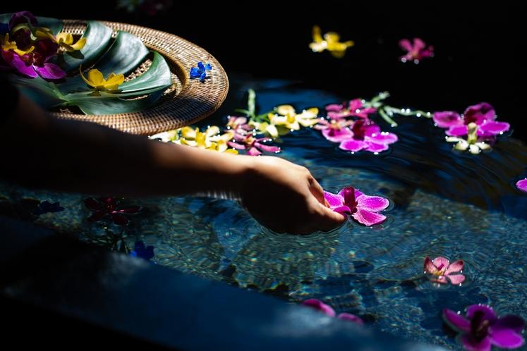 色彩豊かな亜熱帯の花々で フラワーバスをお楽しみください