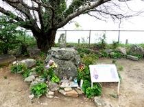 天草四郎の墓(原城)