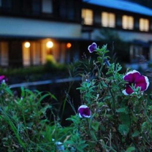 芹川の対岸から眺める/大丸旅館