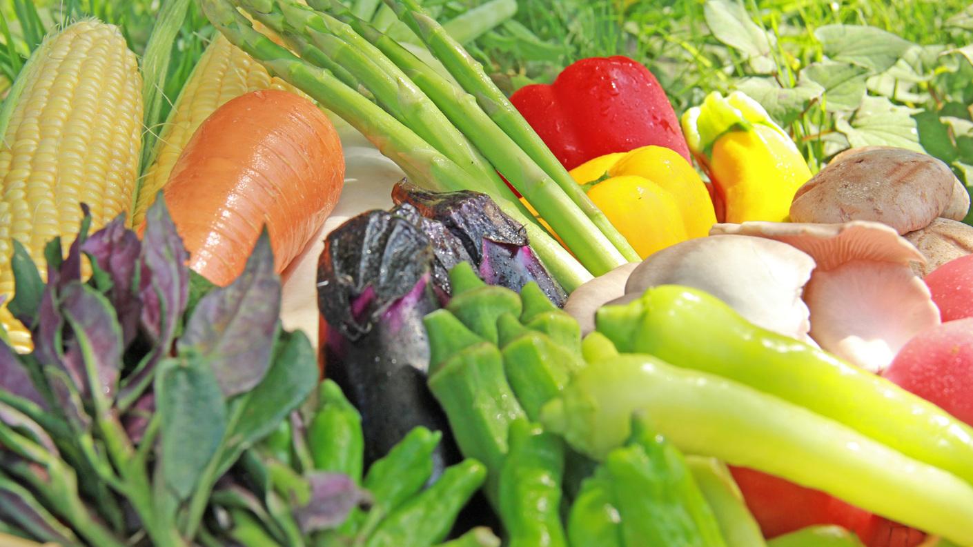 ◆旬の野菜を使用したお食事をご用意しております。