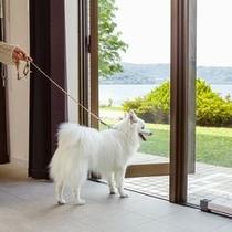 【ペットルーム】湖畔へはお部屋からそのままお出かけができます。夕涼みにも快適なテラスです。