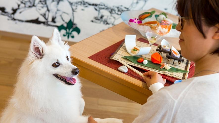 【ペットレストラン】寂しがりなワンちゃんと、夕食のひとときをご一緒に。
