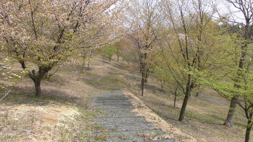 *【散策コース(当館から徒歩約2分)】四季折々で自然を満喫できるコースです。