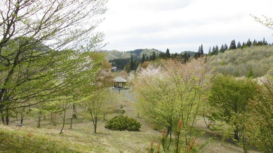 *【散策コース(当館から徒歩約2分木漏れ日や小鳥のさえずりを聞きながら歩けば、リラックス効果は抜群!