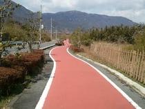 走りやすい自転車道路