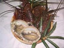地元漁師から直接買い付けている伊勢海老です。