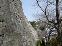見事な石垣・日本百名城の一つです