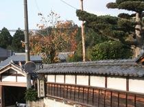 入り口付近 秋景色 11月中旬