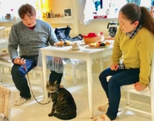 ♪コロナ対応♪営業中♪猫、愛犬と泊まるプラン☆ペットと一緒!☆ 全室WiHi☆♪paypayOK