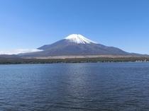 山中湖(周辺環境)