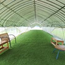 *【ドッグラン】人工芝やベンチを設置しています。