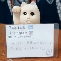 *【館内】まねき猫。フェイスブック・インスタやってます