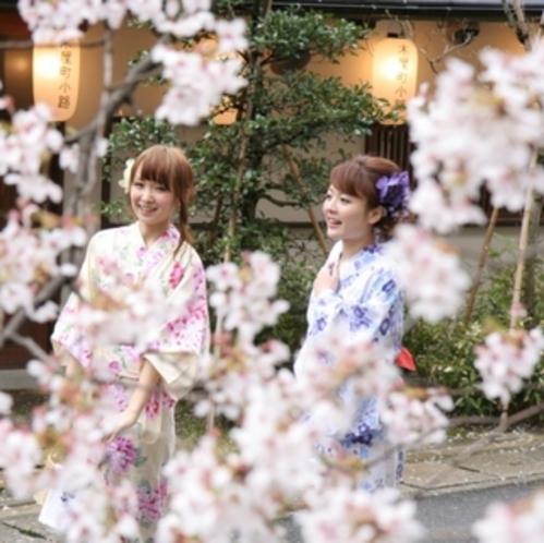 桜並木横の立地