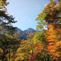 周辺 紅葉