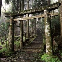 周辺 〜英彦山神宮へ〜