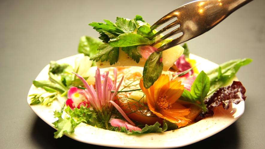 ◇自家製サラダ