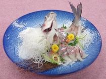 幻とも、その名も美しい「信濃雪鱒」 姿造里 ご一例
