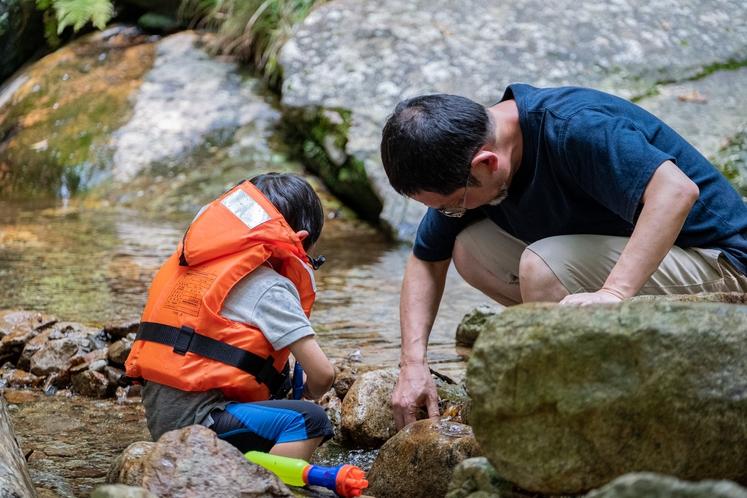 渓流で川遊び