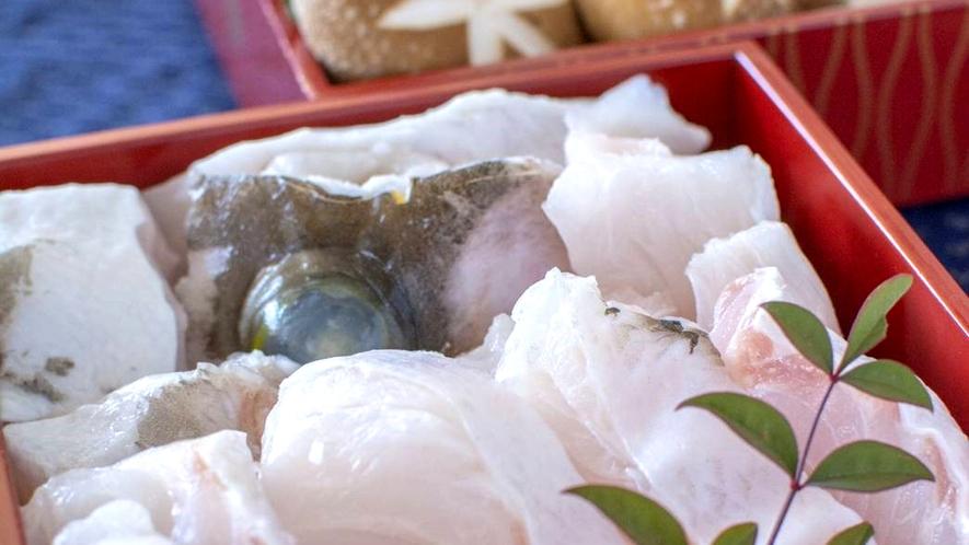 長崎県・五島列島産!幻の天然魚!「クエ」をお召し上がれ♪