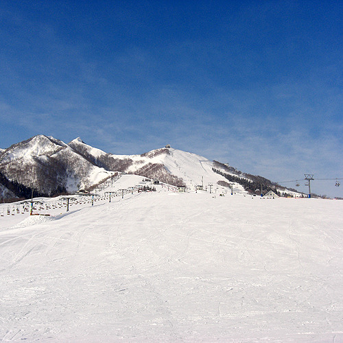 目の前の景色-冬