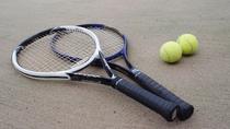 *【テニス用品】テニスコートが2面ございます!合宿にもおすすめ!