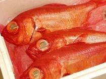 伊豆の金目鯛。人気の煮付は身もふっくら!