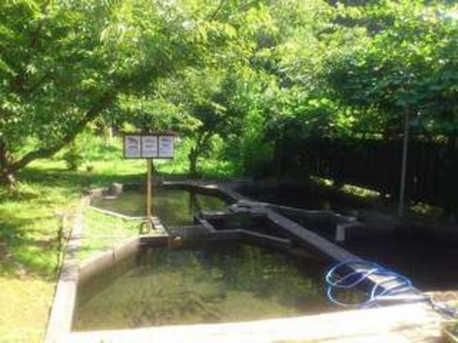 奥野隠フィッシングセンター!釣りの詳細はお問い合わせください。