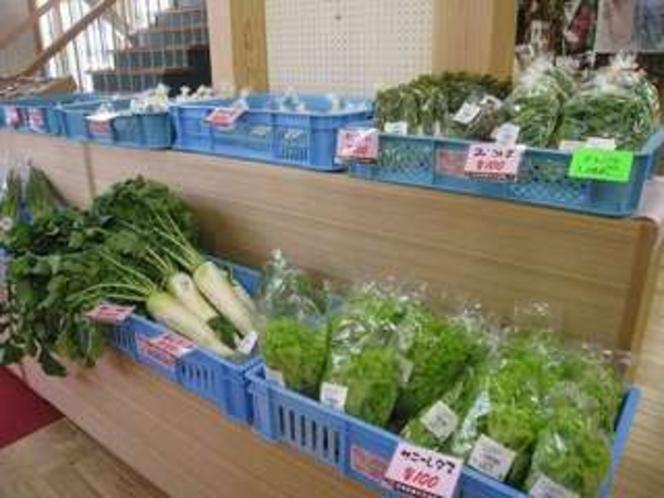 観光交流館内で販売している河津のお野菜