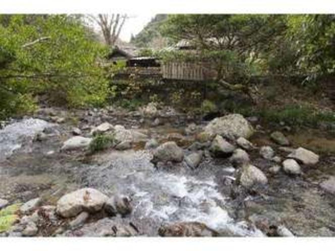 裏の渓流。川遊びや釣りもお楽しみいただけます2