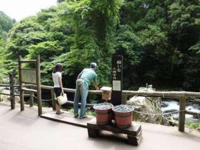 七滝には「願い石」があります。3個で100円!あなたも試してみては♪当館から歩いて7分ほど