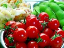 自家製高原野菜