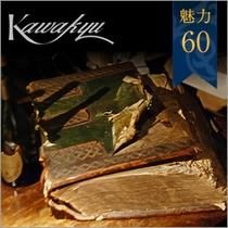 ★魅力60 ワインセラーのセラーブック