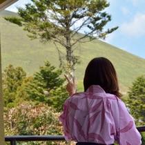 お部屋「ぼたん」から見た大室山