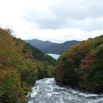 *【周辺(紅葉)】周囲の山々が紅葉で染まります。
