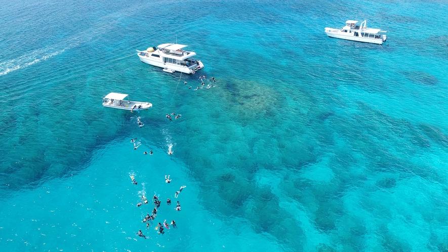 【ダイビング】ケラマブルーと称される青く透き通った慶良間の海
