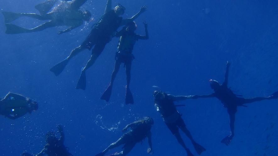 【シュノーケリング】国立公園に指定された慶良間諸島の海を満喫♪